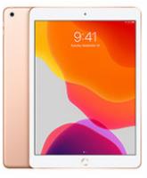 Apple iPad 10.2 (128GB)